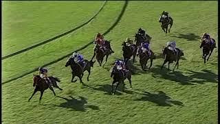 Vidéo de la course PMU THE WHITE HORSE FUNCTION ROOM MR 64 HANDICAP