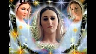 mừng lễ hồn xác mẹ lên trời