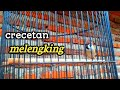 Crecetan Melengking Burung Gereja Gacor Super Jernih Cocok Untuk Masteran  Mp3 - Mp4 Download