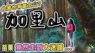 第一次台灣登山大迷路...加里山的迷幻霧..台灣版富士山苗栗景點
