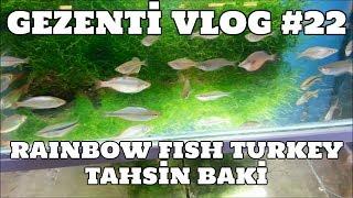 Hobihanem - Gezenti Vlog #22 (Rainbow Fish Turkey) [Tahsin Baki] {Fethiye} [28.05.2017]