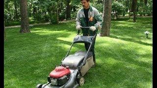 Уход за газоном(Косить газон нужно раз в неделю. Первый укос должен составлять 7-8 см, а последующие -- 2-4 см. Удобрения для..., 2014-06-21T21:53:55.000Z)