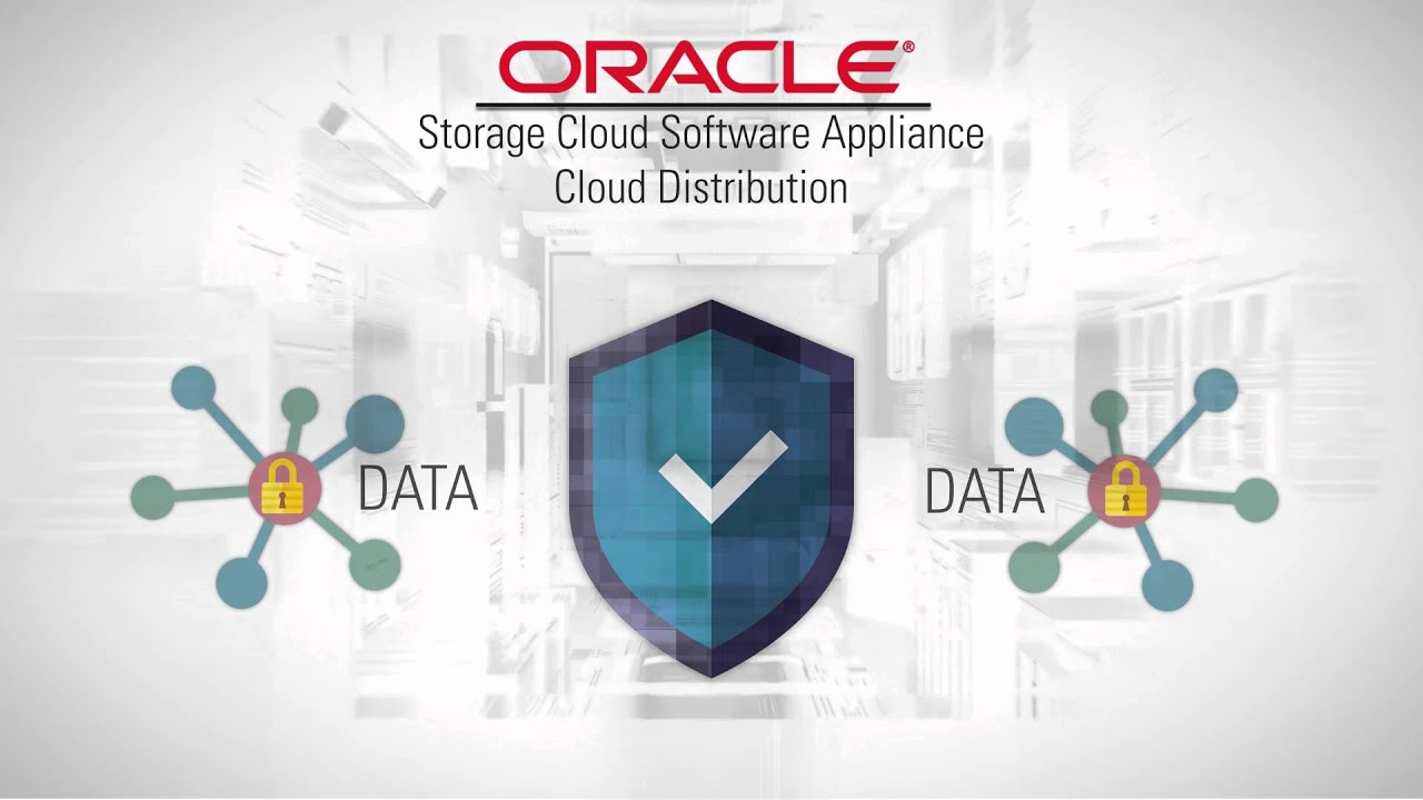 Storage Cloud Software Appliance – Cloud Distribution: Your File Server in  the Cloud