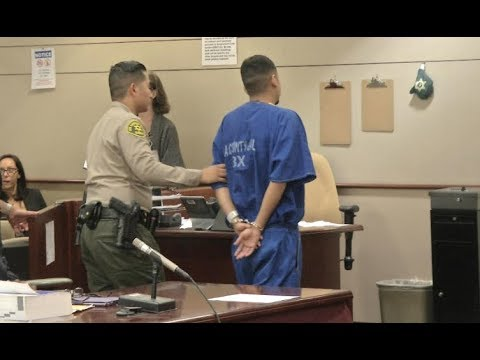 Lancaster Hit & Run Driver Who Killed 11-Year Old Sentenced to 25 Years