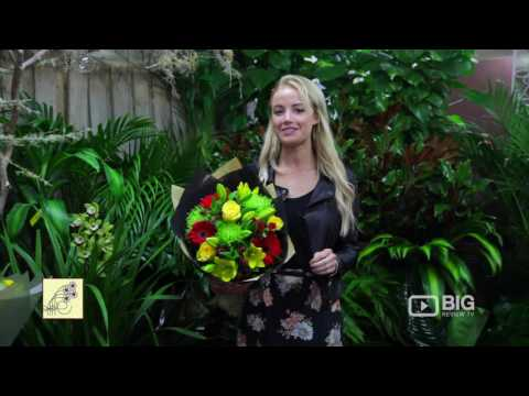 Floral Expression, A Flower Shop In Northmead Sydney