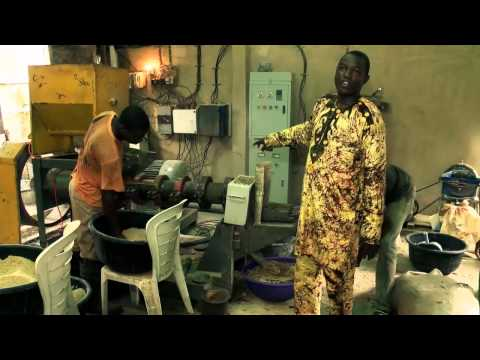 BOI Weekly: A Look At Fishery Business In Nigeria