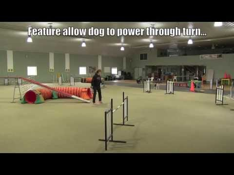 Tight Turns In Dog Agility...Video One