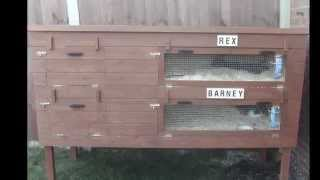 Self Built Rabbit Hutch