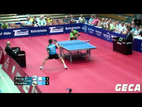 Wang Xi vs Thomas Pavelka[German League 2012/2013]