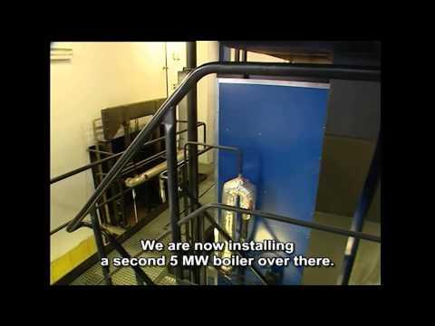 Bio-energy In Motion Bulgaria