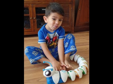 Buffalo Daniel Reviews The Fisher-Price Code-A-Pillar