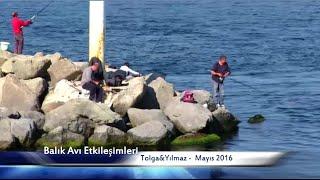Balık Avı Etkileşimleri Mayıs 2016