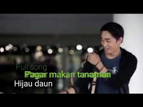 Official video Hijau daun | Pagar makan tanaman