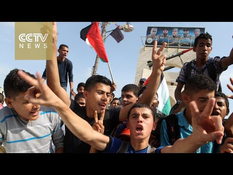 Palestinian protesters demand safety, rights
