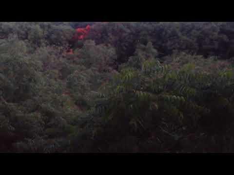 Dire Dawa University Videos - Musica