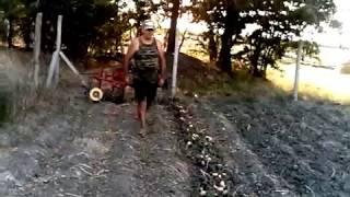 Копаємо картоплю мотоблоком зубр кх 31 2017р