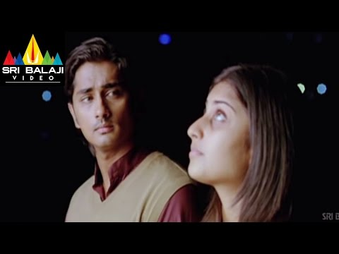 Oye Movie Shamili Celebrating Siddharth Birthday Scene | Siddharth, Shamili | Sri Balaji Video