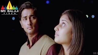 Oye Movie Shamili Celebrating Siddharth Birthday Scene   Siddharth, Shamili   Sri Balaji Video