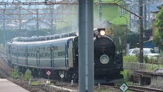 JR東日本EL・SLぐんまよこかわ到着・発車@磯部駅(2020/8/30)