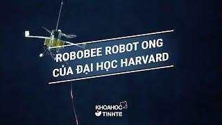 RoboBee   robot ong của Đại học Harvard