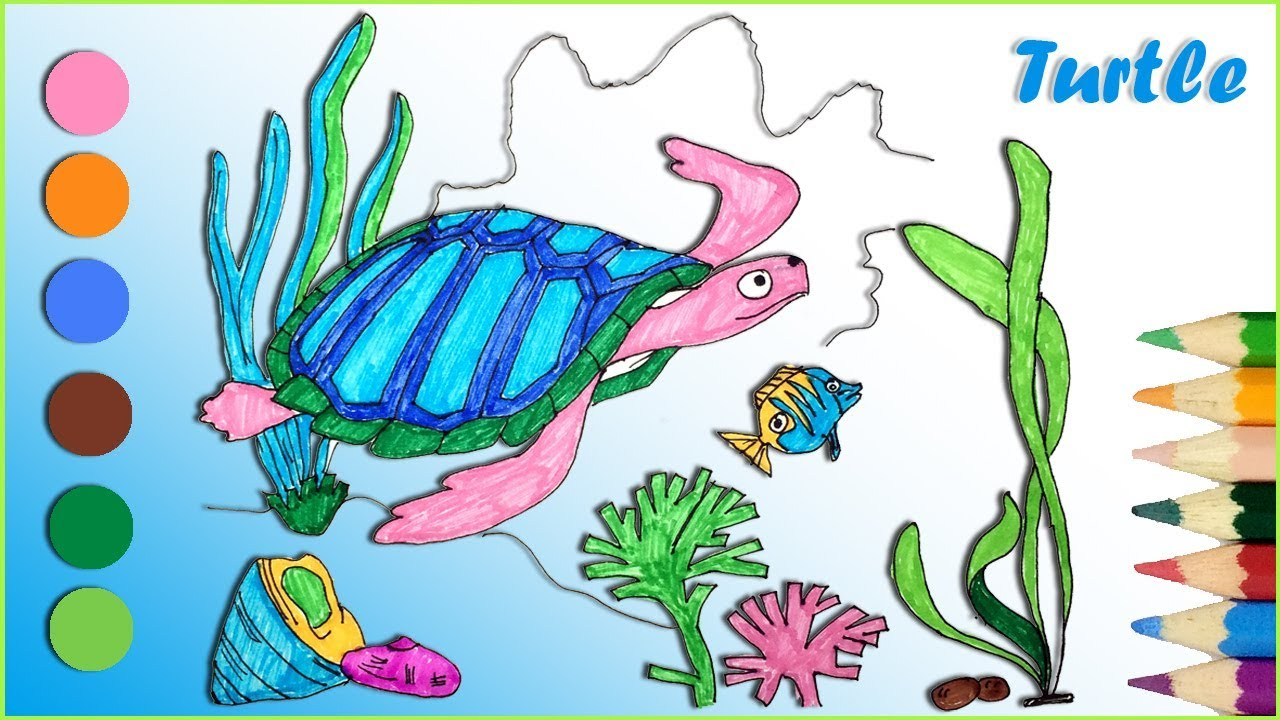 How To Draw And Coloring A Sea Turtle Drawing And Coloring Pages