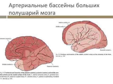 неврологический осмотр