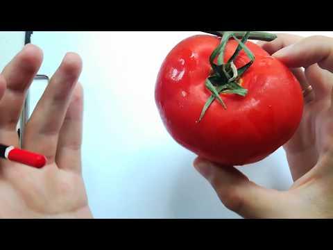 Как нарисовать томат карандашом