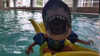 Ode to sha sha- Shark in pool, Mac style
