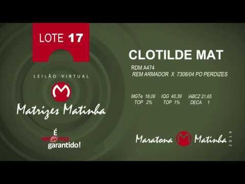 LOTE 17 Matrizes Matinha 2019