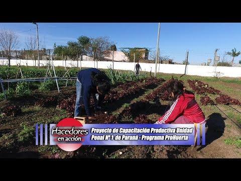 Proyecto de Capacitación Productiva Unidad Penal de Paraná