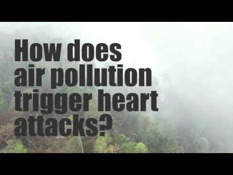 Even Moderate Air Pollution Could Trigger Severe Heart Attacks: Study