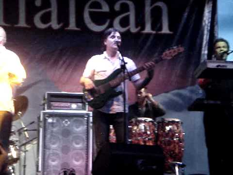Omar Hernandez playing with Carlos Oliva & Los Sobrinos del Juez Live Vehicle Tu Carrito Medley