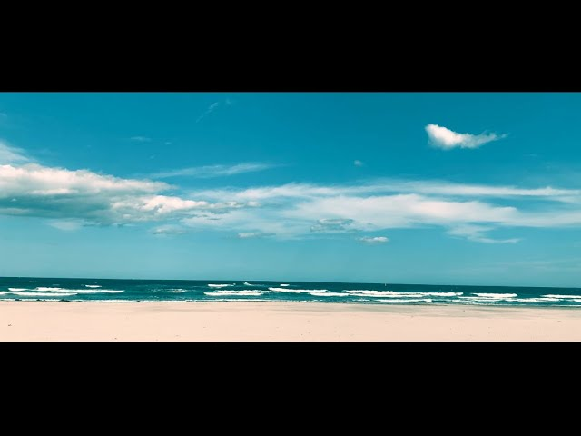 zanpan「レモンサワー」Music Video