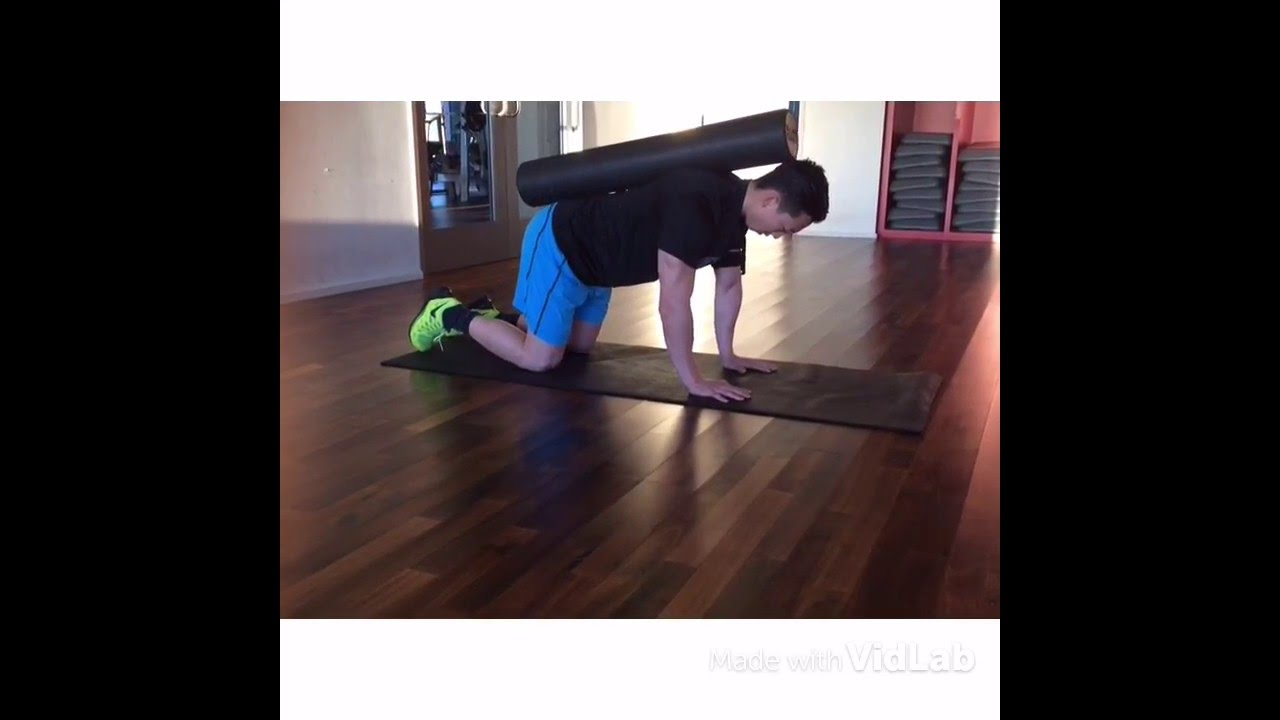 6929ea9a3 Adding Dynamic Movement to the Plank - YouTube