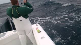 Freeman 37 jigging in rough seas