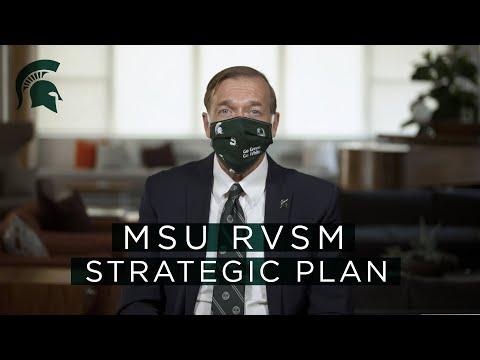 MSU RVSM Strategic