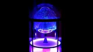 Fantasia Cosmos 2 Fiber Optic Lamp