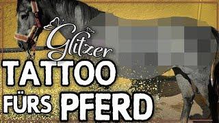 GLITZER TATTOO fürs PFERD ✮