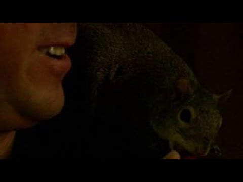 Man speaks out on fight to keep 'emotional support squirrel'