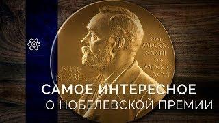 Все, что нужно знать о Нобелевской премии