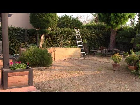 Backyard Ecological Landscape Introduction