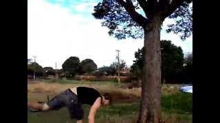 Baixar Ioanderson Decknes vs Árvore
