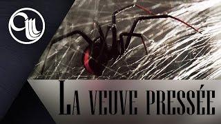 La veuve pressée - Episode #6
