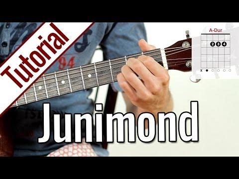 Rio Reiser/Echt - Junimond | Gitarren Tutorial Deutsch