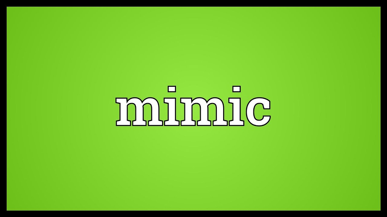 What is Mimicry Word Meaning 40