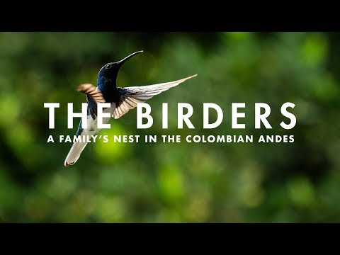 THE BIRDERS | A family's nest in the Colombian Andes.