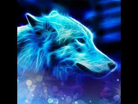 Красивые картинки волков
