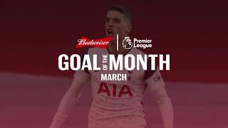 Premier League Goal of the Month Nominees | March
