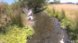 Good Fly Fishing in the Central South Island Stream's Creek's River's Lake's New Zealand