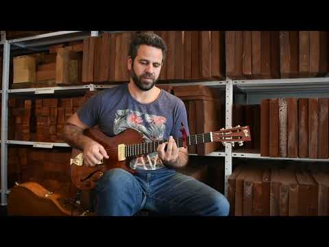 Yoni Schlesinger | Brothers In Arms (Dire Straits) Solo Fingerstyle |  B&G Little Sister